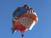 abq-balloon-fiesta-17