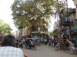Street Scene 2 Varanasi