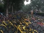 So many bikes