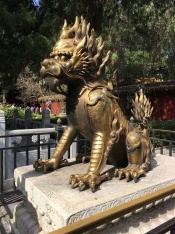 Dragon in the Forbidden City