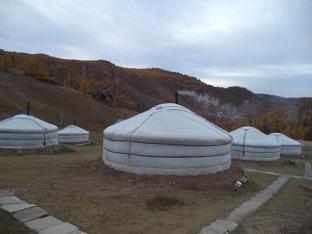 Ger camp 1