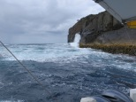 A taste of the Tasman Sea