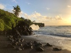 Black sand beach - photo Ken