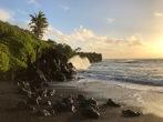 Black sand beach - photo Ken