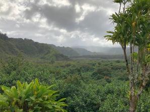 Wailua Valley, Maui - photo Ken