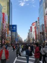 Main street of Akihabara