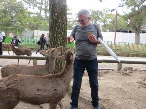 Ken feeding the deer