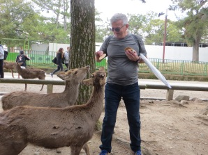 Ken feeding the deer