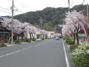 Street in Tsuruga