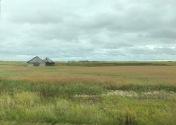 Abandoned barn, SK, photo by Ken